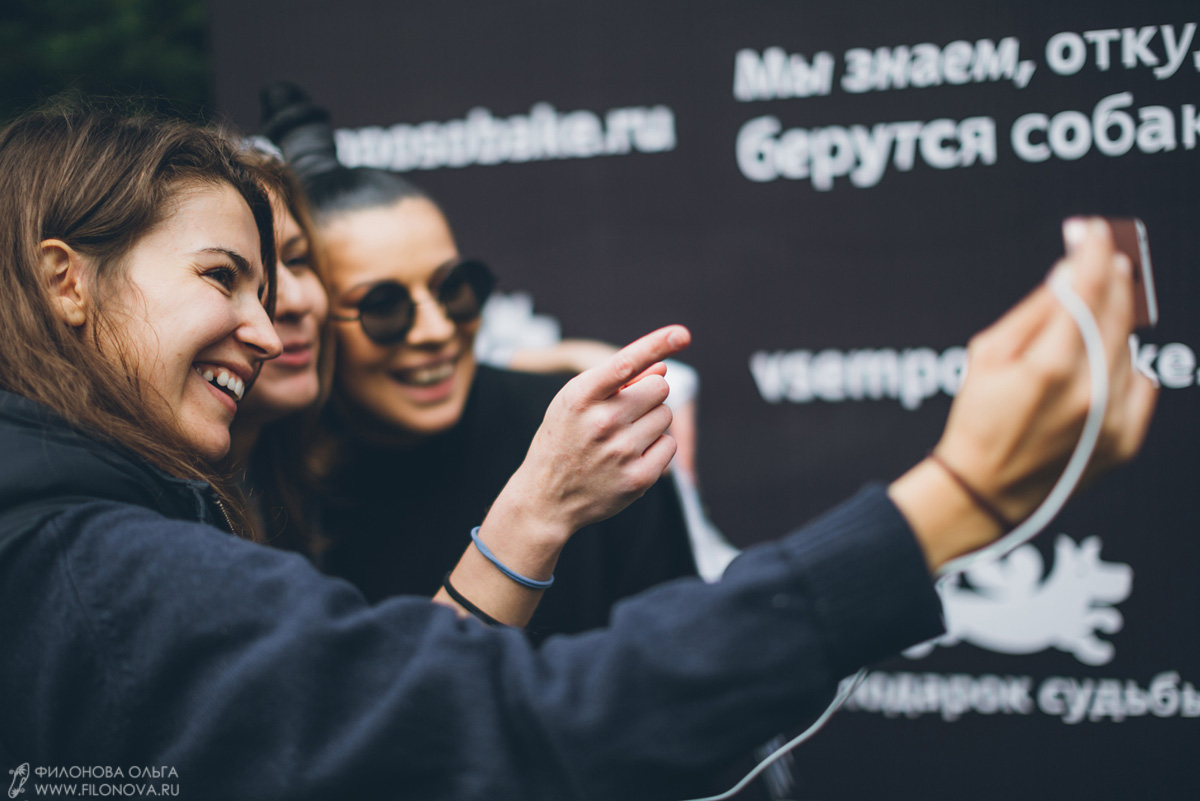 Выставка дворняг #всемпособаке (сентябрь 2016)