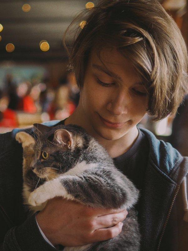 Cat_2019